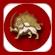logo Iran NTV (Simay Azadi)