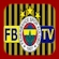 logo Fenerbahce TV