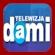 logo Dami 24